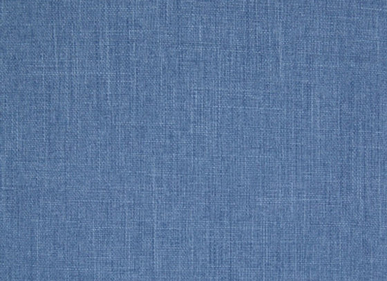 B7093 Blueberry