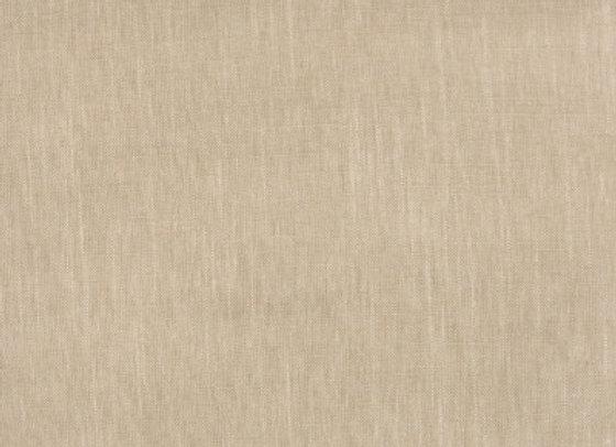 B1911 Driftwood