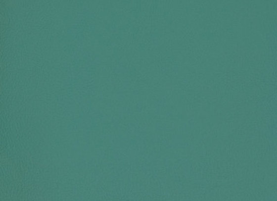 B7008 Green