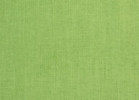 B8644 Greenery