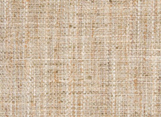 B8080 Papyrus