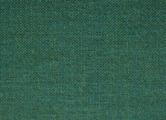 F1069 Blue Grass