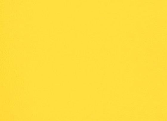 B6998 Yellow