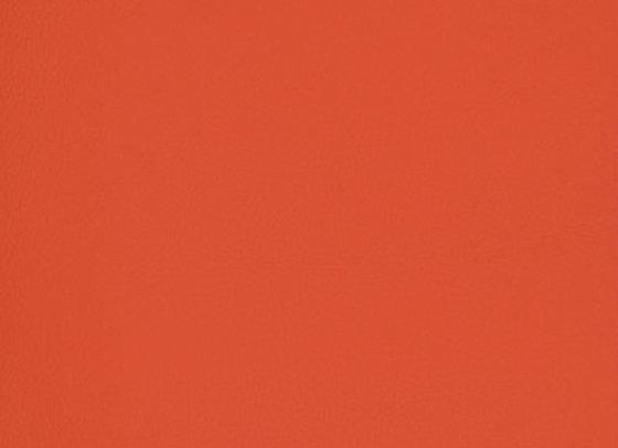 B7000 Brave Red