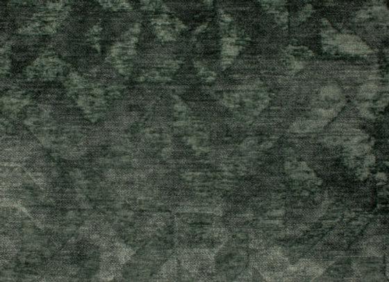 S1186 Spruce