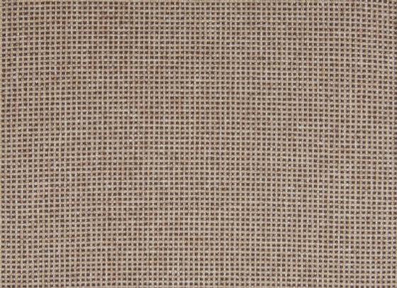 B5340 Tumbleweed
