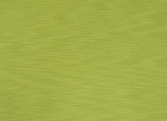 B9687 Kiwi
