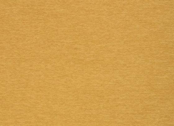B8575 Saffron