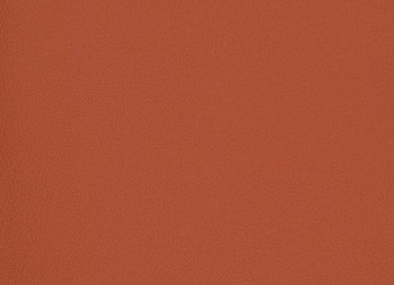 B7001 Gypsy Red