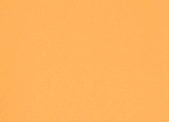 B6994 Orange