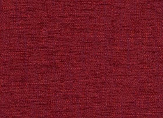 B1141 Cranberry