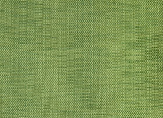 B1419 Verde