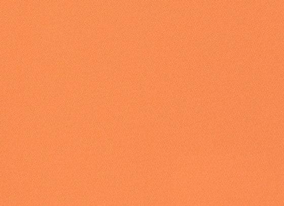 B8786 Carrot