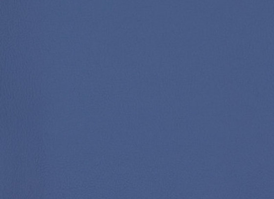 B7009 Blue