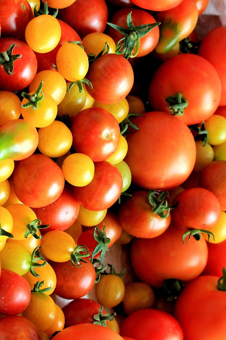 red-tomatoes-162830.jpg