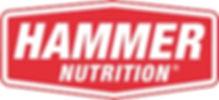 Hammer Logo PNG.jpg