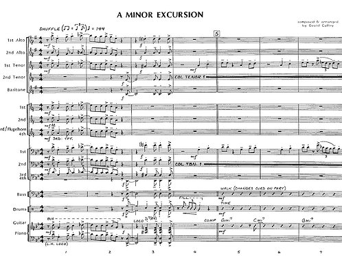 A Minor Excursion (score only)