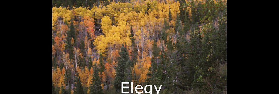 Elegy (score & parts)