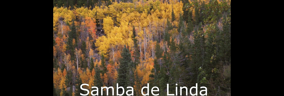 Samba de Linda (score & parts)
