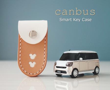 canbus01-min.JPG