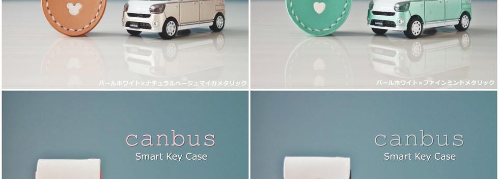 canbus05-min.jpg