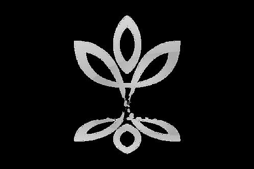 MHA Practitioner / Renewal Membership