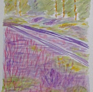 Lavender Field by Barboria Bjarne