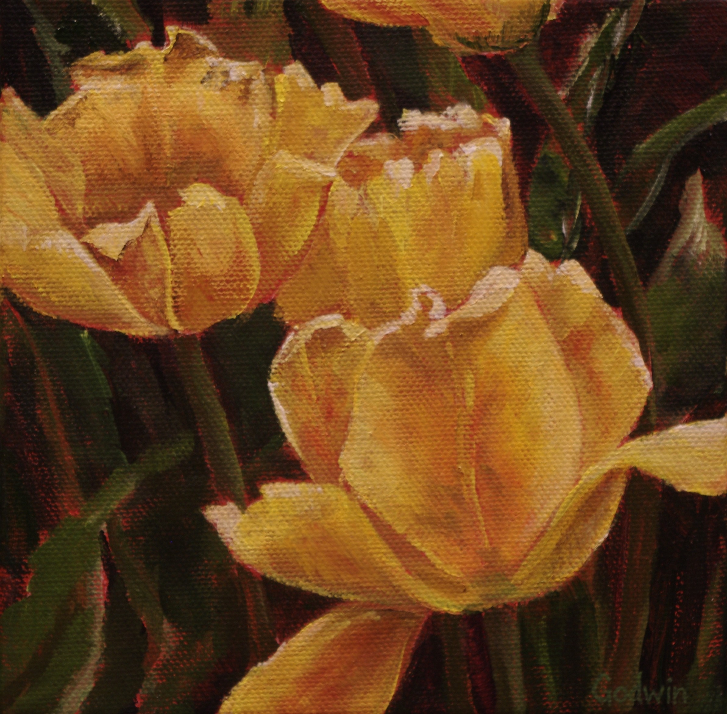 Flower Studies-Golden Memories