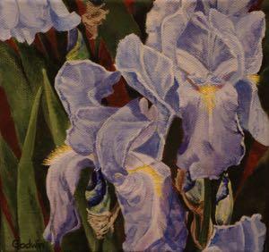 Flower Studies-Louise's Legacy