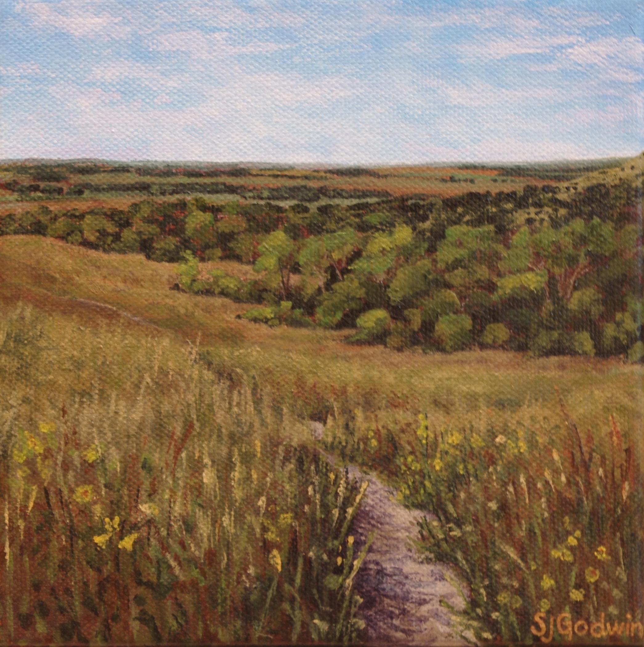 Konza View