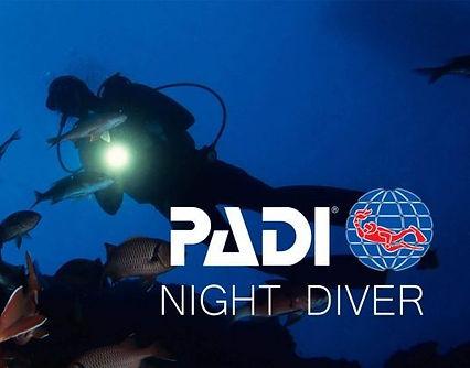 Night-Diver-e1499916704225.jpg