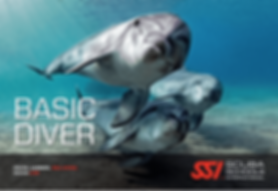 basic-diver.png