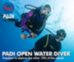 PADI-OpenWater-Diver-course.jpg