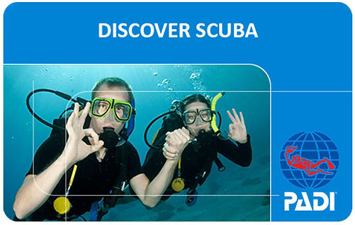 padi-discover-scuba-diving-djerba.jpg