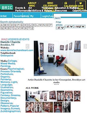 Danielle Charette-artist-art-brooklyn-br