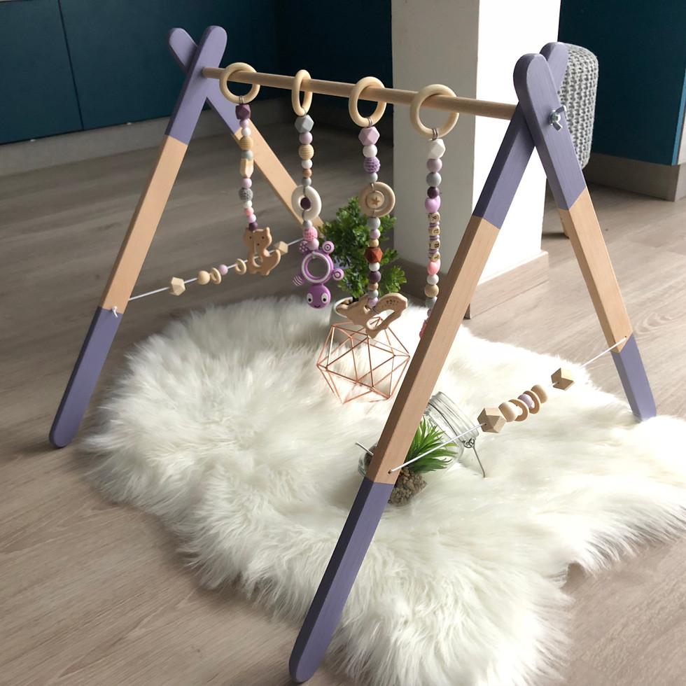 Modele violet 2
