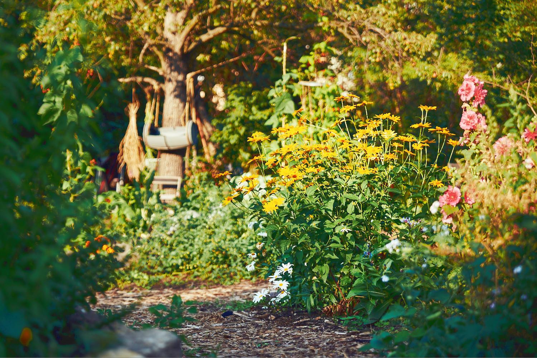 Garten Blumen.jpg