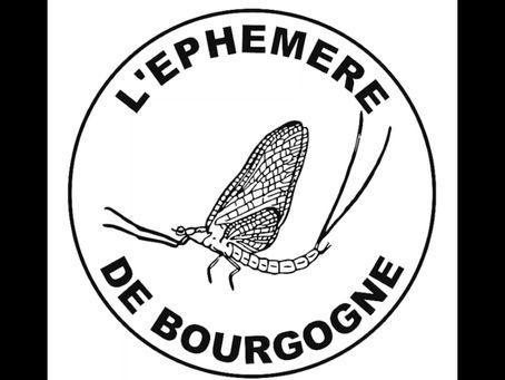Un avant-goût de L'Éphémère de Bourgogne en 40 secondes
