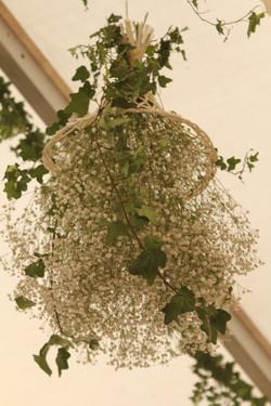 Suspension plafond : gypsophile et lierre