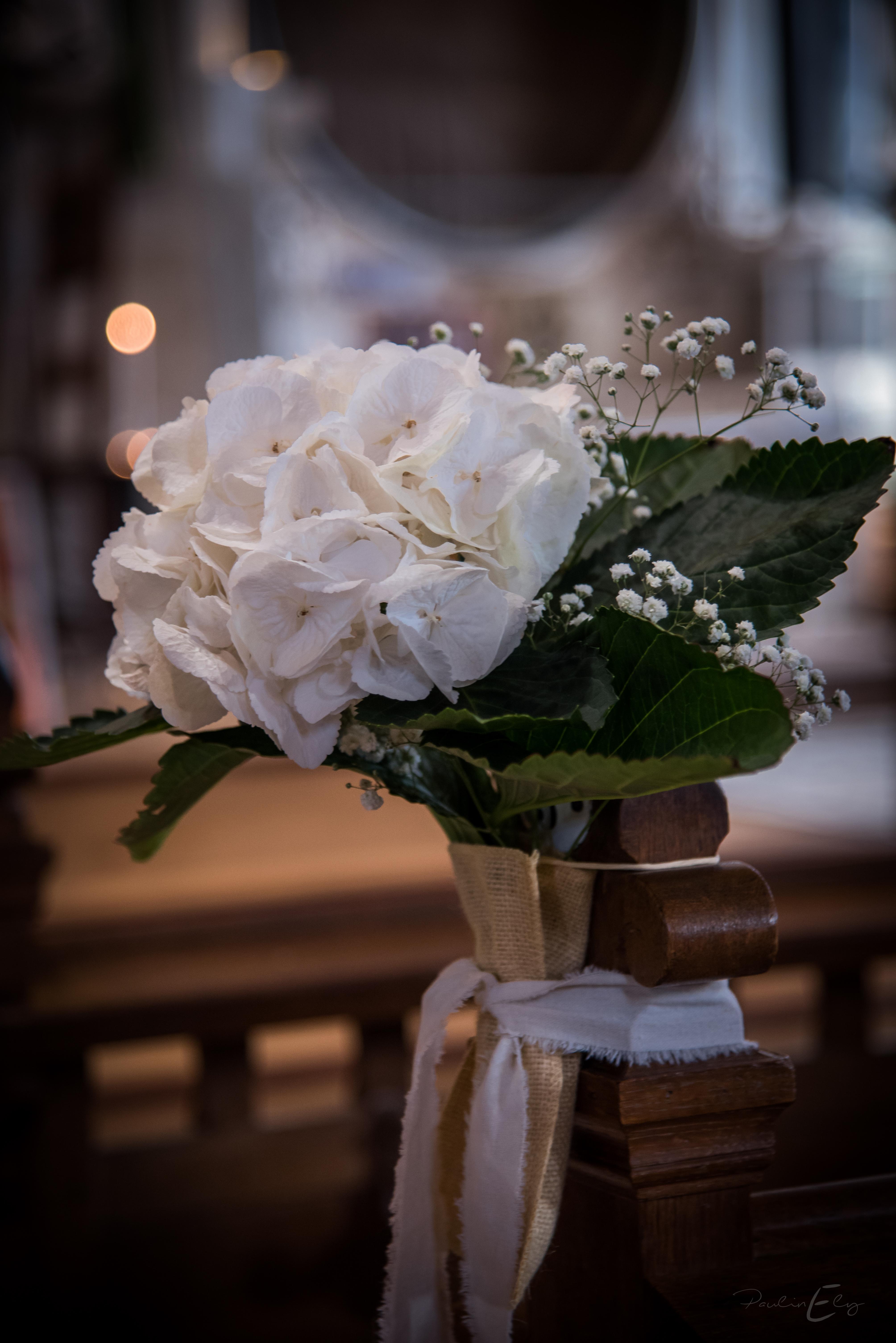 Bouts de bancs église hortensia blanc
