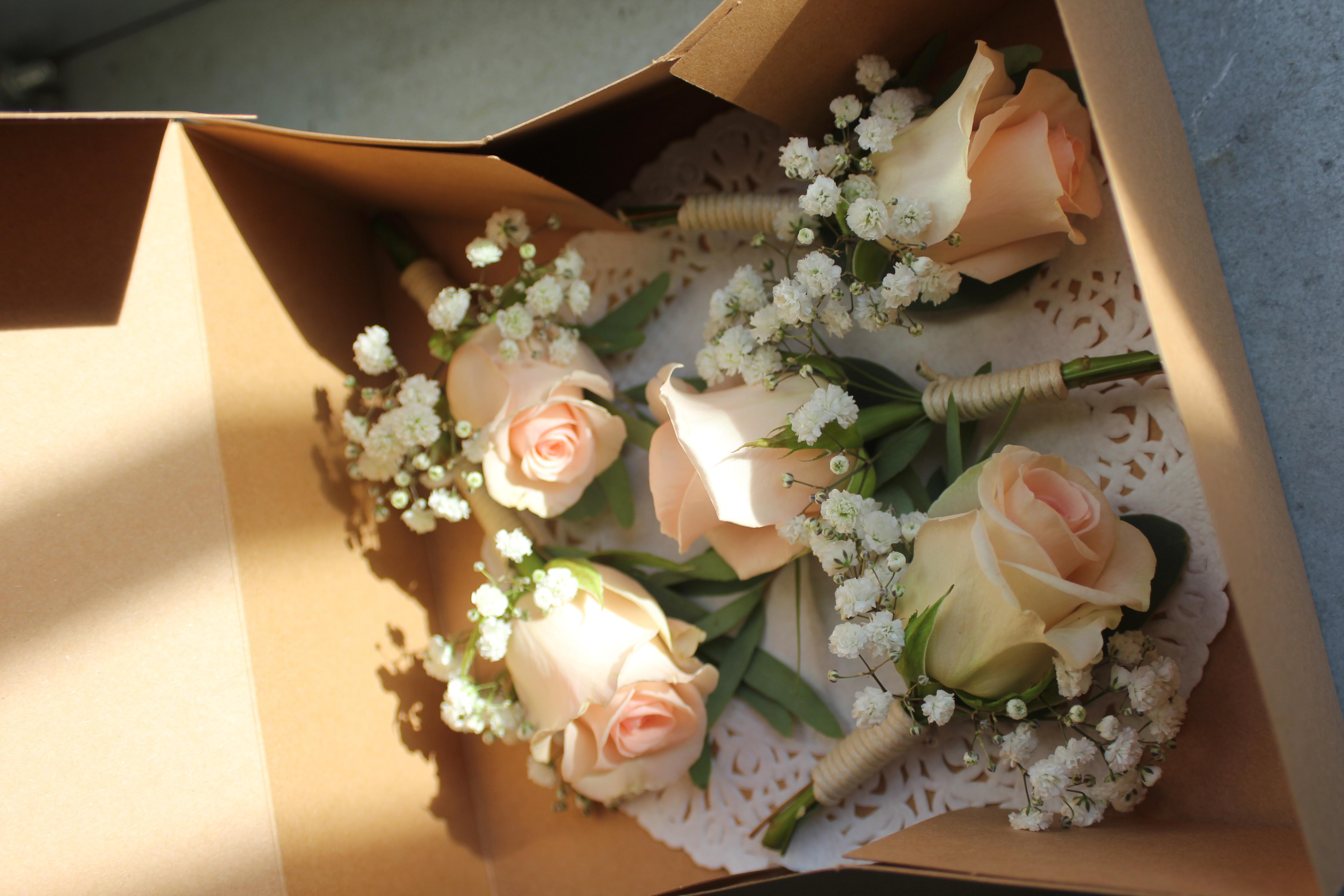 Boutonnières rose poudré