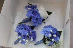 Boutonnières bleues et blanches