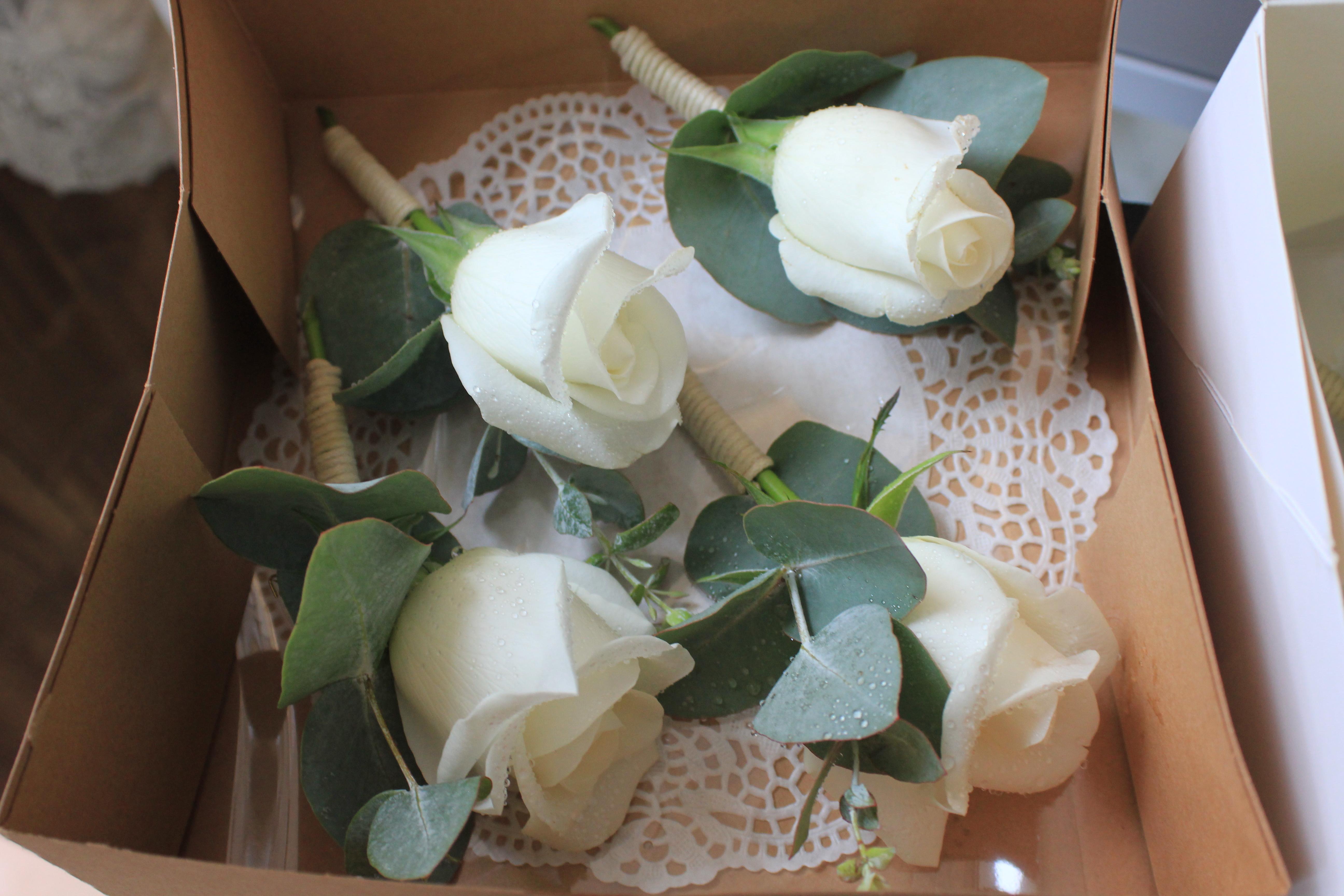 Boutonnières avec rose blanche et eucalyptus