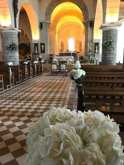 Hortensias à l'église St Philbert