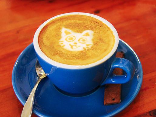 温もり/a cup of relief