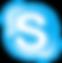 Skype_mark.png