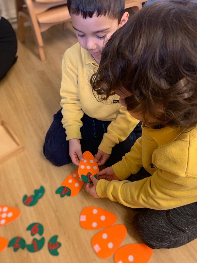 Carrot maths sorting activity, combining written numerals and physical quantities.