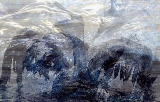 OIL-Oilspills 8