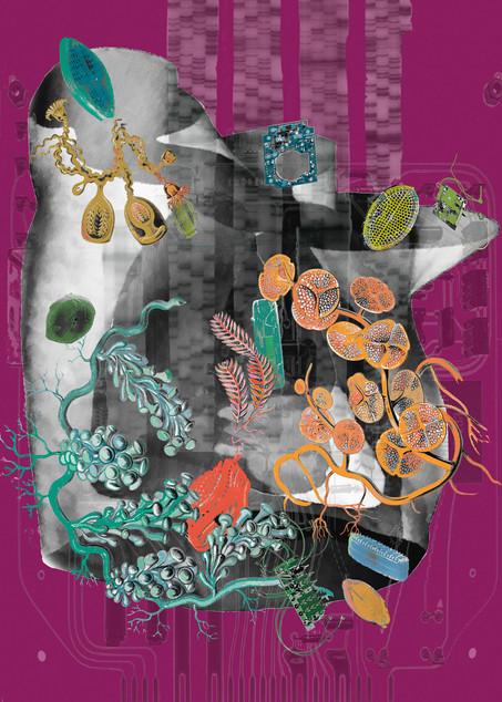 Amalgamated Fragmentation/Plastisphere-Body 1