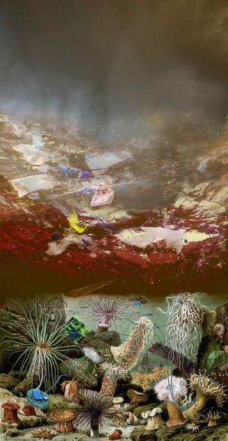 Amalgamated Fragmentation / Plastisphere-Water 3